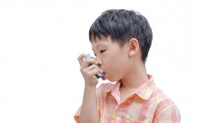 一味药膳平哮喘